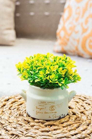 Arma House Bella Casa Sarı Yapay Şimşir ( Yapay Çiçek ) Sarı